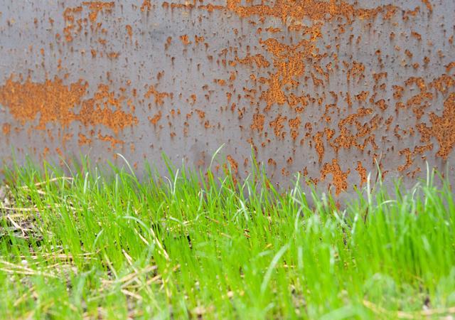 Im Verlauf der ersten Monate beginnt die Metalloberfläche die typische rostbraune Farbe anzunehmen.
