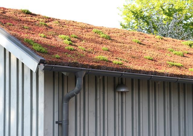 Der Aufbau begrünter Dächer wirkt temperaturausgleichend.