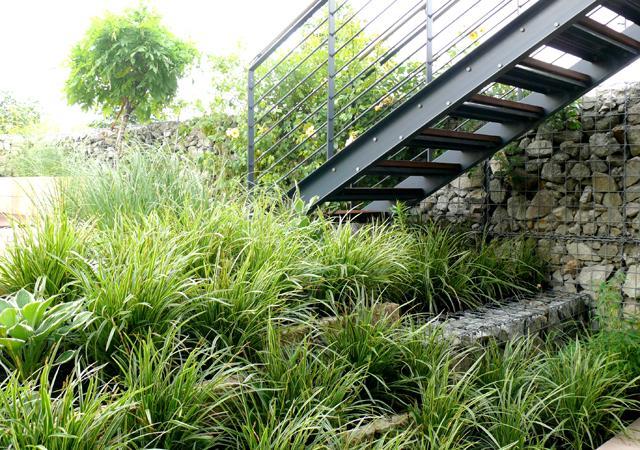 """Pflanzenverwendung: Selbst in schattigen """"Problemlagen"""" finden sich noch die passenden Pflanzen."""