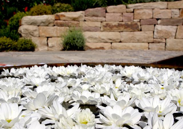 Wasser bereichert jeden Garten.