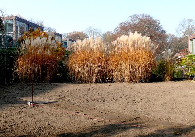 Hier entsteht kein neuer Rasen: Vorbereitungen für die Pflasterung.
