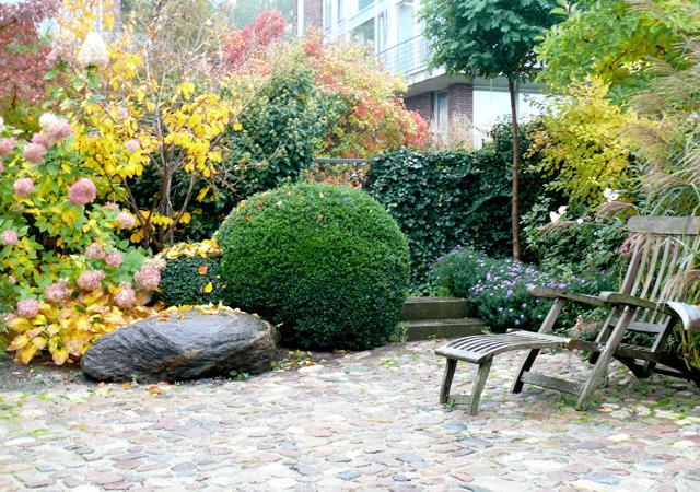 Buchsbaum bleibt auch im Winter strukturbildend.
