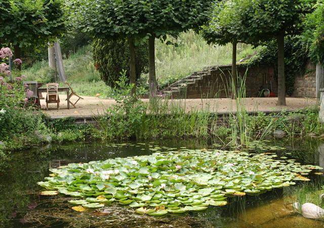 Teich am Hangfuß der Havelkante.