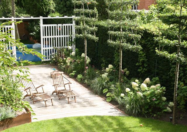 Ein Raumteiler gliedert den Garten, ein Apfelbaumspalier schützt vor Blicken.