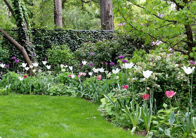 Frühling im Gemeinschaftsgarten.